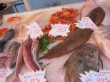 market fish stand