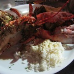lobster, rice & ratatouille
