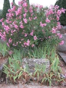 Camus gravesite