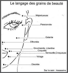 signification-mouches-grains-beauté