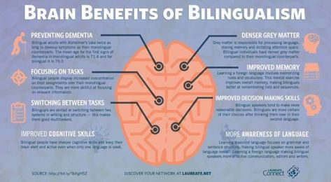 bilingual-brain